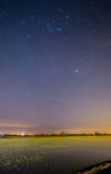 Nightscape paddy field Stock Images
