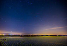 Nightscape paddy field Royalty Free Stock Photo