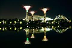 Nightscop av trädgården vid fjärden i singapore Fotografering för Bildbyråer