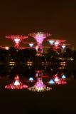 Nightscop del giardino dalla baia a Singapore Immagini Stock Libere da Diritti