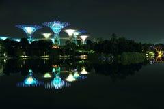 Nightscop del giardino dalla baia a Singapore Immagine Stock Libera da Diritti