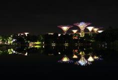Nightscop del giardino dalla baia a Singapore Fotografia Stock