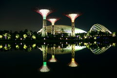 Nightscop of garden by the bay in singapore. Super trees and domes light on Stock Image