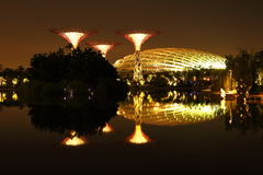 Nightscop of garden by the bay in singapore Royalty Free Stock Images