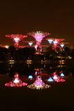 Nightscop of garden by the bay in singapore. Super trees light on Royalty Free Stock Images
