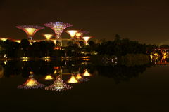 Nightscop of garden by the bay in singapore. Super trees light on Stock Photography