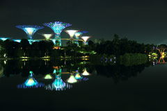Nightscop of garden by the bay in singapore. Super trees light on Royalty Free Stock Image