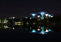 Nightscop of garden by the bay in singapore. Super trees light on Royalty Free Stock Photos