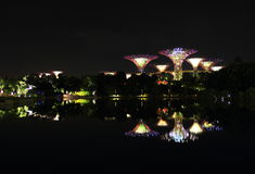 Nightscop of garden by the bay in singapore. Super trees light on Stock Photo