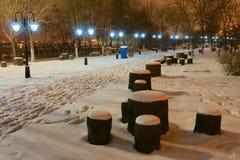 nightscop park Zdjęcie Stock