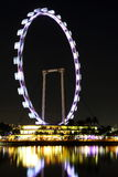 Nightscop of singapore flyer. Singapore flyer in the night, lights on, so beautiful Stock Photography