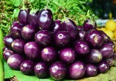 Indian vegetable- EGGPLANT Stock Photos