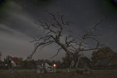 Nightshot on cemetery. Nightshot on cementary with candles and startrails Royalty Free Stock Image