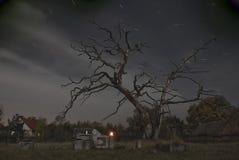Nightshot en cementerio Imagen de archivo libre de regalías