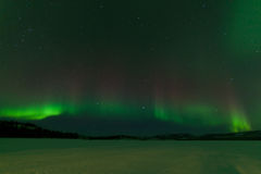 Nightsky Aurora borealis frozen Lake Laberge Yukon Royalty Free Stock Images