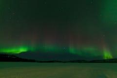 Nightsky Aurora borealis frozen Lake Laberge Yukon Royalty Free Stock Images