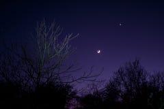 Nightsky met Maan, Venus en Aldebaran Stock Afbeelding