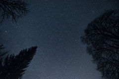 Nightsky. Nice Nightsky with stars and the moon Royalty Free Stock Photography