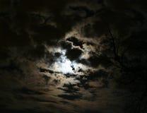Nightskyscape Fotografia Stock