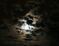 Nightskyscape Stock Photography