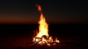 Nighttime campfire stock footage