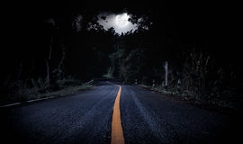 Nighttime with landscape of moonlight in a beautiful green fores. Nighttime with curvy roadway in forest at national park. Landscape of moonlight in a beautiful stock images