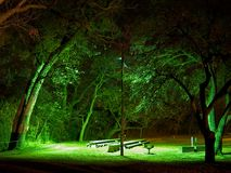 Nighttime picnic. A bright lamp lights up a picnic area and some of its surroundings at night Royalty Free Stock Photo