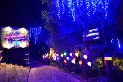 Nightview украшений Mystica на сафари ночи Стоковая Фотография