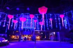 Nightview van Mystica-Decoratie bij Nachtsafari royalty-vrije stock foto