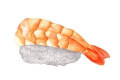 Nigiri寿司用在白色背景隔绝的虾,与裁减路线,水彩日本人食物 库存图片