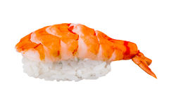 Nigiri sushi with shrimp isolated on white background Royalty Free Stock Photo