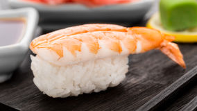 Nigiri sushi with shrimp Stock Images