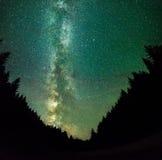Nigt på bergskog med stjärnor, djup himmel och den mjölkaktiga vägen Arkivbild