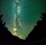Nigt sur la forêt de montagnes avec les étoiles, le ciel profond et la manière laiteuse Photographie stock
