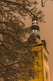 Niguliste church through snowbound tree branches by night Stock Images