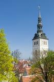 Niguliste Museum Tallinn Lizenzfreies Stockfoto