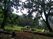 Nigurani Image libre de droits