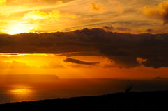 Niihau sunset Royalty Free Stock Photo