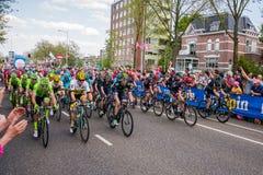 Nijmegen nederländska Maj 7, 2016; Yrkesmässiga cyklister för sprinta fotografering för bildbyråer