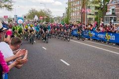 Nijmegen, Nederland 7 Mei, 2016; Professionele fietsers vóór de sprint Stock Foto