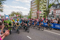 Nijmegen, Nederland 7 Mei, 2016; Professionele fietsers vóór de sprint Royalty-vrije Stock Foto