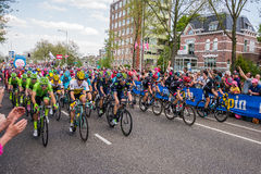 Nijmegen, Netherlands May 7, 2016; Professional cyclists before the sprint stock image