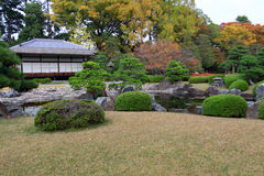 Nijo castle in colorful leaf and tree in japan. Kouyou Stock Photography
