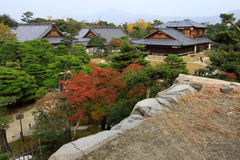 Nijo castle in colorful leaf and tree in japan Royalty Free Stock Image