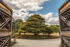 Nijo kasztelu Ninomaru pałac Fotografia Royalty Free