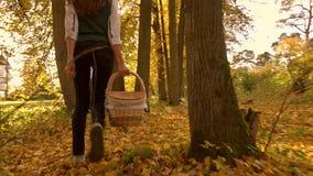 Nikły brunetki dziewczyny odprowadzenie przez jesień lasu trzyma pyknicznego kosz słoneczny dzień 4K steadicam wideo zdjęcie wideo