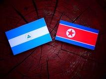 Nikaraguańska flaga z koreańczyk z korei północnej flaga na drzewnym fiszorku Zdjęcia Royalty Free