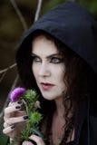 Nikczemna czarownica Fotografia Royalty Free