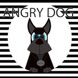 Nikczemny czarny pies Obraz Royalty Free