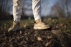 Nike Air Max 97 guld- skor i gatan Arkivfoton